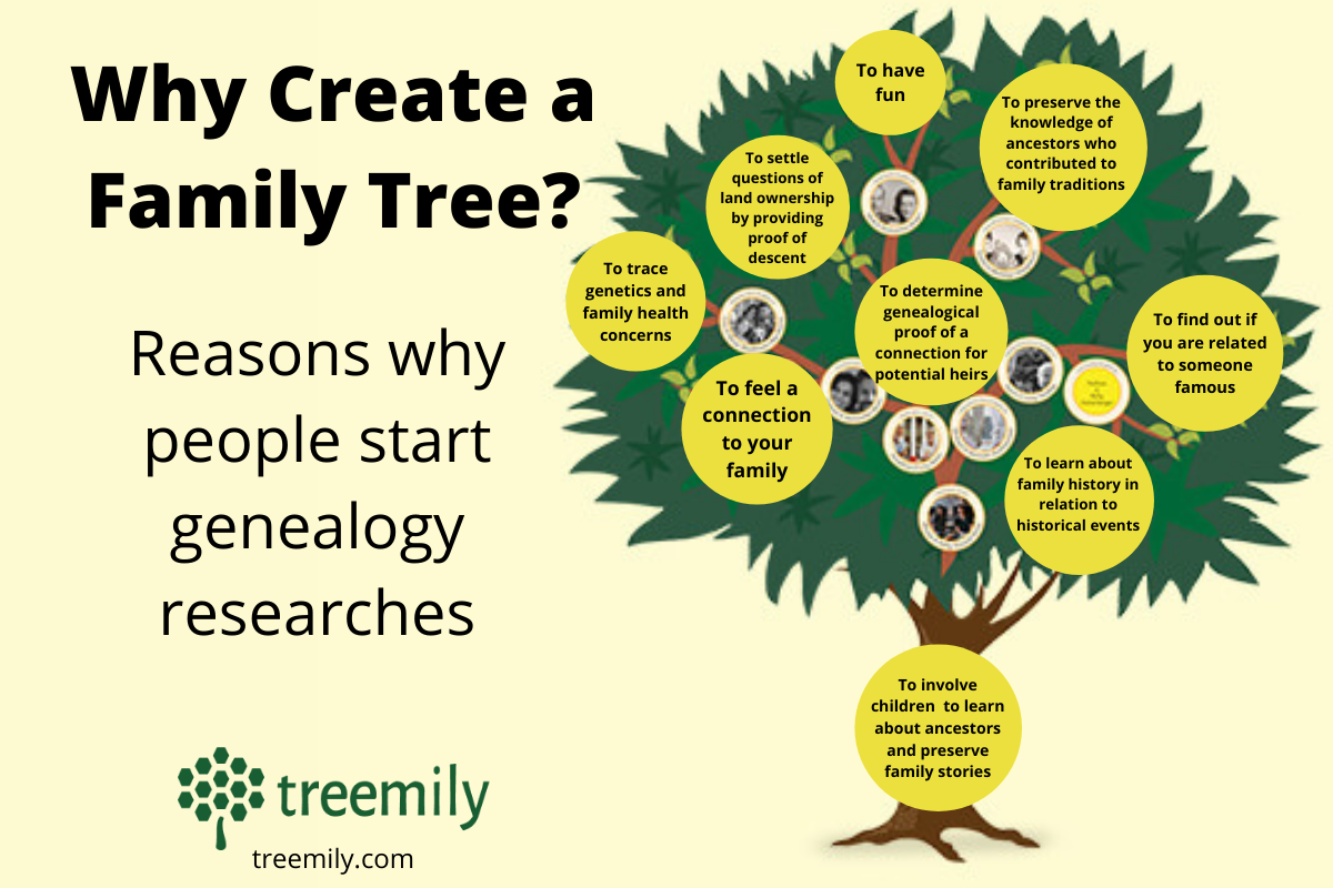 Why Create a Family Tree?