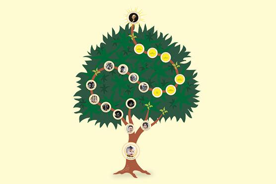 Dynasty Treemily